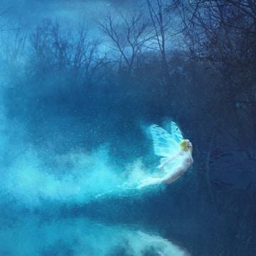 [PHLEARN] Night Fairy PRO