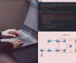 [Pluralsight] Cisco Enterprise Networks: Troubleshooting BGP and GRE Tunnels